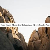 Pure Piano Music for Relaxation, Sleep, Study, Zen von Various Artists