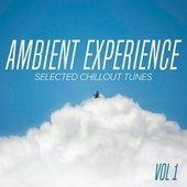 Ambient Experience Vol. 1 : Selected Chillout Tunes von Various Artists