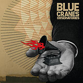 Observatories by Blue Cranes