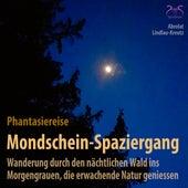 Mondschein-Spaziergang - Phantasiereise: Wanderung durch den nächtlichen Wald ins Morgengrauen, die erwachende Natur geniessen von Birgit Lindlau-Kreutz