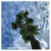 Tranquil in Turmoil by Brad