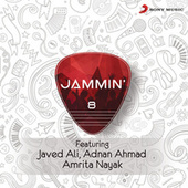 Jammin', 8 by Javed Ali