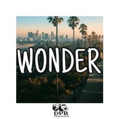 Wonder von Dj Panda Boladao