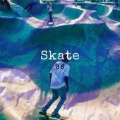 Skate B8 de Net