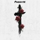 Paradise by Freddy