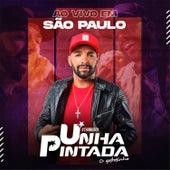 Ao Vivo em Sao Paulo de Unha Pintada