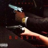 Bussin fra Jackol