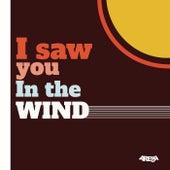 I Saw You in the Wind von Arema Arega