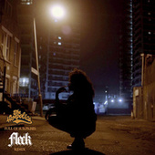 Full of Surprises (FLeCK Remix) by The Hempolics