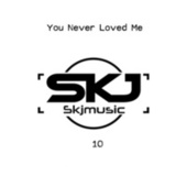 You Never Loved Me by SKJmusic