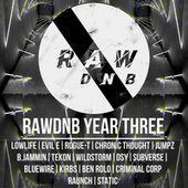 RAWDNB Year Three by Various Artists