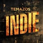 Temazos Indie de Various Artists