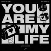You Are My Life (Dennis Quin Remix) von Chocolate Puma