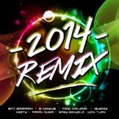 2014 Remix de Various Artists