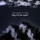 Mary Did You Know von Josh Daniel