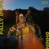 Likolo (feat. Ninho) by Fally Ipupa