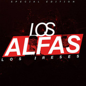 Los Alfas by Harryson