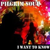 I Want to Know (Remix) von Pilgrim Soul