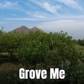 Grove Me by Byron Lee, The Paragons, Jackie Mittoo, The Gaylads, The Uniques