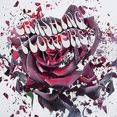 Warrington Boy by Crashing Flowers