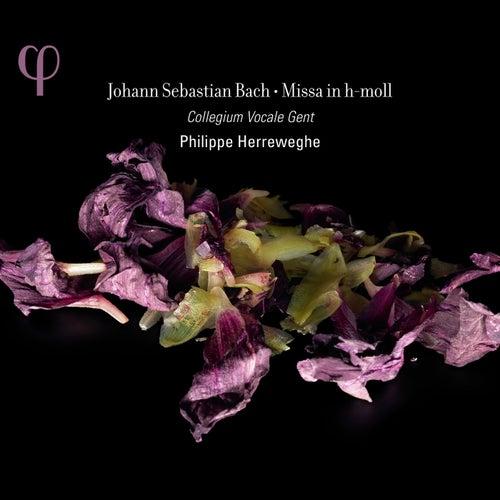 Missa in h-moll by Collegium Vocale Gent