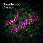 Downtempo Classics von Various Artists