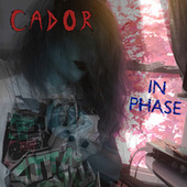 In Phase by Cador