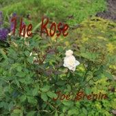 The Rose de Joe Brenin