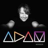 Wonder by adam