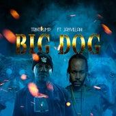 Big Dog de Trini Trump