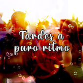 Tardes a puro ritmo von Various Artists