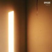 Opaque by Su Jung Moon