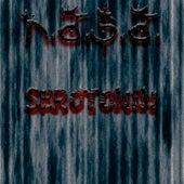 Serotonin de N.A.S.A.