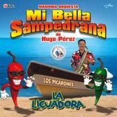 La Licuadora. Música de Guatemala para los Latinos by Marimba Orquesta Mi Bella Sampedrana