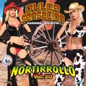 Nortirrollo, Vol. 20. Música de Guatemala para los Latinos von Marimba Orquesta Dulce Sensacion