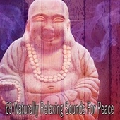 69 Naturally Relaxing Sounds for Peace de Musica Relajante