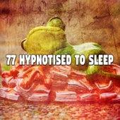 77 Hypnotised to Sle - EP de Sleepicious