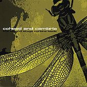 The Second Stage Turbine Blade (Re-Issue) de Coheed And Cambria