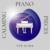 Für Alina: Calming Piano Pieces von Various Artists