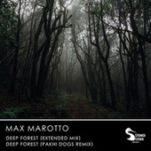 Deep Forest by Max