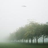 In Meadows fra Joseph Metz