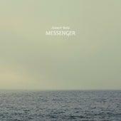 Messenger by Joseph Metz