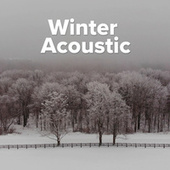 Winter Acoustic fra Various Artists