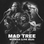 Nodriza (Live 2019) by Mad Tree