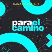 Para el Camino von Various Artists