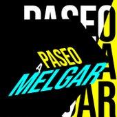Paseo a Melgar von Various Artists