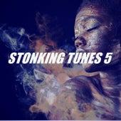 STONKING TUNES 5 von Various Artists
