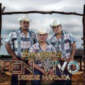 En Vivo Desde Navojoa by Sonoreños Del Compa Tico