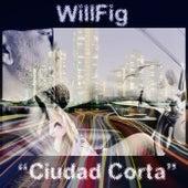 Ciudad Corta de Willfig