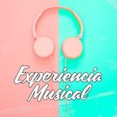 Experiencia Musical de Various Artists